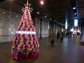 東京国際フォーラム地下一階コンコース