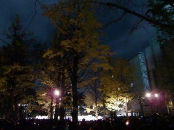 青山学院クリスマス・ツリー点火祭