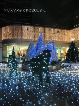 クリスマスまであと26日☆ミ