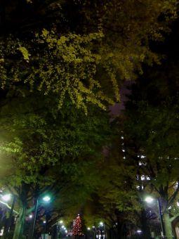 青山学院クリスマス・ツリー点火祭00
