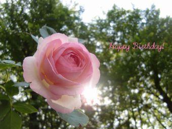 5月30日生まれの皆さん、お誕生日おめでとう!