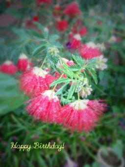 6月28日生まれの皆さん、お誕生日おめでとう!