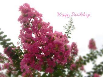 7月29日生まれの皆さん、お誕生日おめでとう!