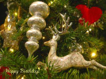 12月1日生まれの皆さん、お誕生日おめでとう!