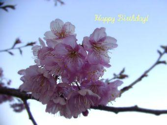 2月26日生まれの皆さん、お誕生日おめでとう!