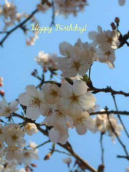 3月12日生まれの皆さん、お誕生日おめでとう!