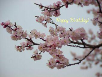 3月19日生まれの皆さん、お誕生日おめでとう!