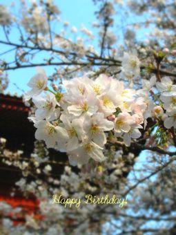 3月22日生まれの皆さん、お誕生日おめでとう!