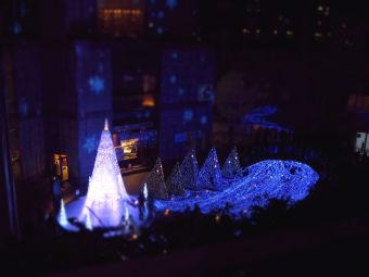 カレッタ汐留〜Caretta illumination2012〜 「リュミエの森」