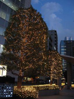 新宿パークタワー10