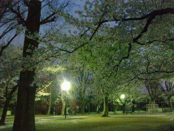 春日公園(蕨市)