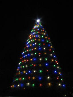 青山学院のクリスマスツリー