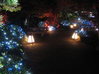 中仙道蕨宿『光と音のページェント』09