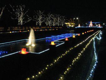 昭和記念公園(カナール&キャンドルタワー)無地.jpg