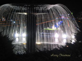 昭和記念公園(大噴水越しのカナール).jpg