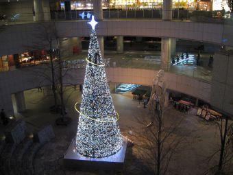 東京オペラシティのクリスマスツリー.jpg