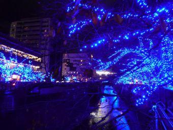 中目黒「青の洞窟」イルミネーション☆駒沢通り側