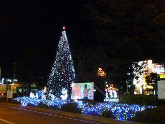 東浦和駅前クリスマスツリー01