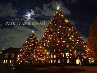 クリスマスカード(立教池袋)1024x768