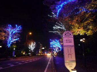 戸田市後谷公園01