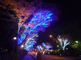 戸田市後谷公園09