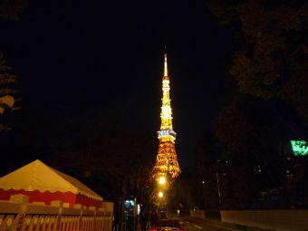 東京タワー06