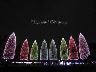 7days until Christmas.