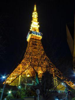 「2015」表示の東京タワー11