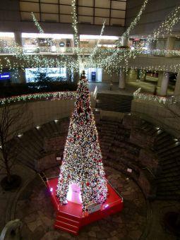 東京オペラシティ12